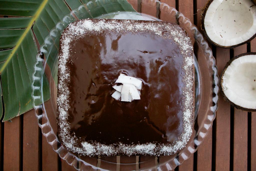 torta_al_cocco_e_cioccolato
